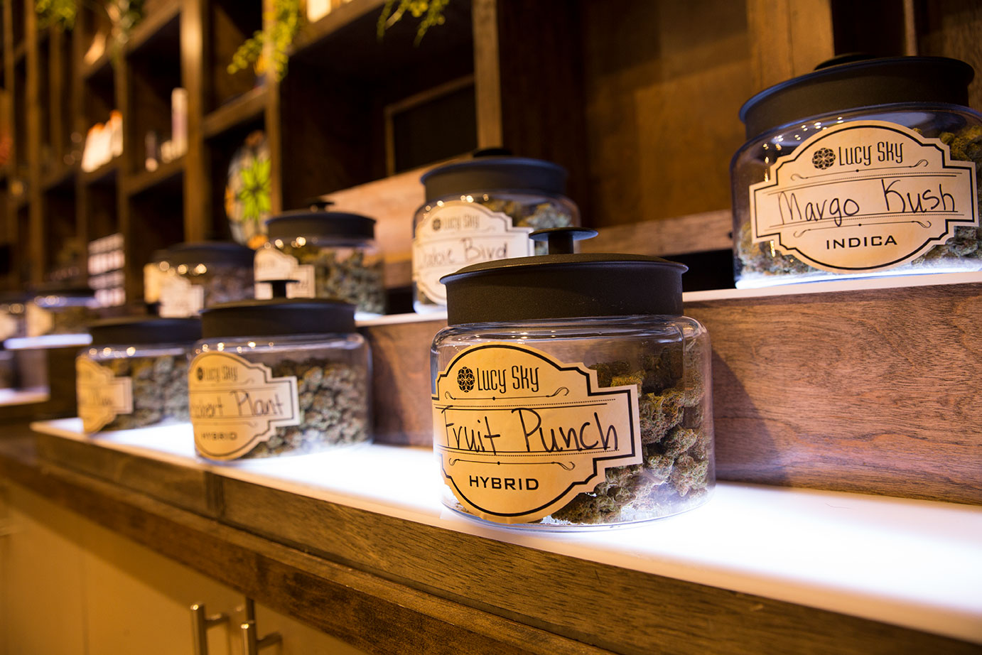 Lucy Sky Cannabis Boutique