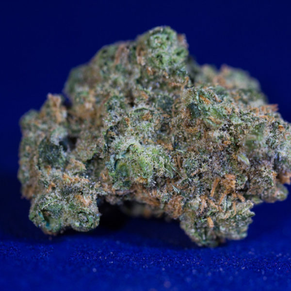 Super Lemon Haze - Lucy Sky Cannabis Boutique